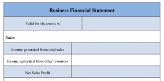 Business Financial Statement Form