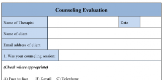 Counseling Evaluation Form