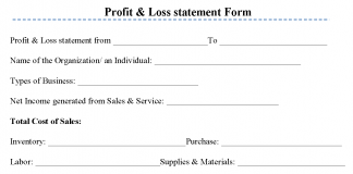 Profit & Loss statement Form