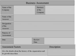 Business Assessment Form