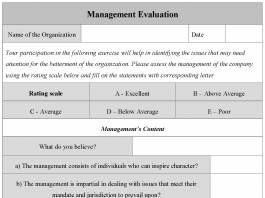 Management Evaluation Form