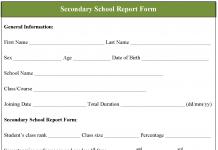 Secondary School Report Form
